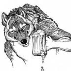 GreyWolf profilkép